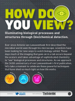 How do you view? Illuminating biological processes and
